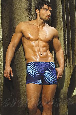 Мужские плавки шорты Jolidon, Румыния B11I фото