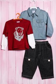 Комплект для мальчика: джемпер, рубашка и штанишки, хлопок, код 56384, арт 28003