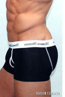 Трусы мужские boxer, хлопок Romeo Rossi RR365 - фото №1